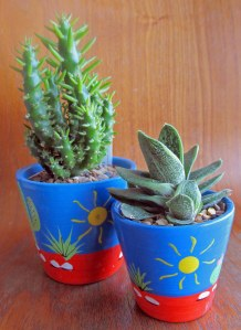 Trendy Interior Plants........Cacti!!!!